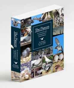 The Pigeon by Author Dr Colin Walker Its veterinary care, manage