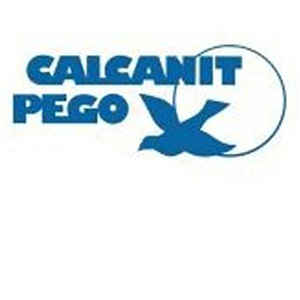 Calcanit Pego