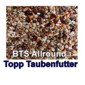 BTS Allround Topp Taubenfutter