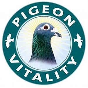Pigeon Vitality