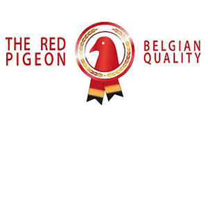 Red Pigeon New!!!
